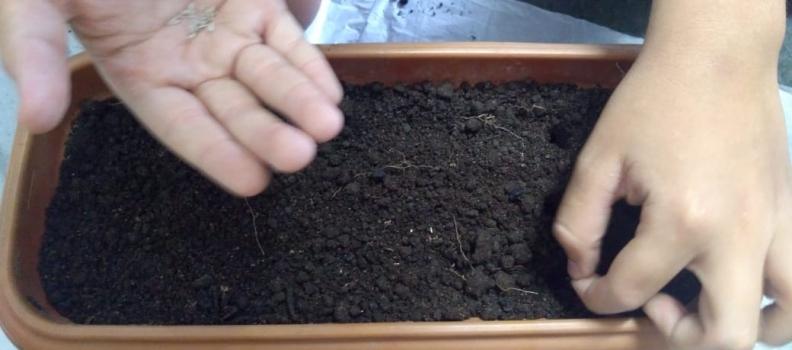 Botando a mão na terra – Construindo uma estufa em sala de aula